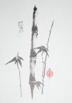 bamboo image cropped